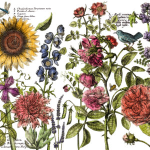 IOD DT Botanist's Journal